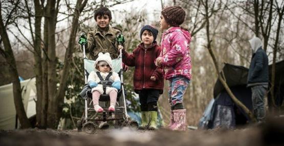 AB'ye 20 bin çocuk sığınmacı başvurdu